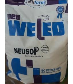 NEU-SOP